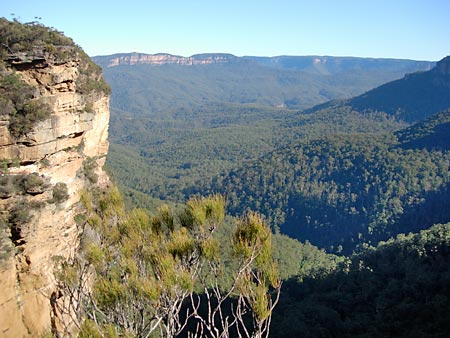 View from a lookout in the Blue Mountains